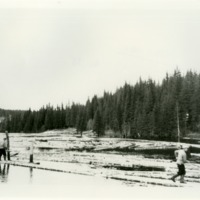 002 Ringflatdammen ca 1950-60.tif